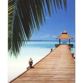 Paradise Beach  1.83x2.54 εκ
