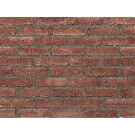 Τουβλάκι Eco Brick red