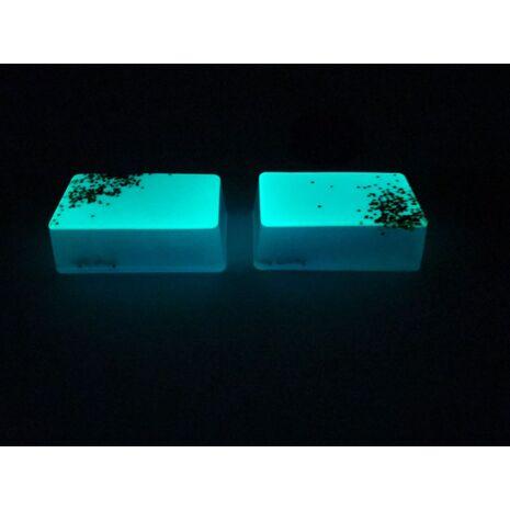 Φωσφορίζουσα χρωστική Neon NPP-ΒΒ 15gr
